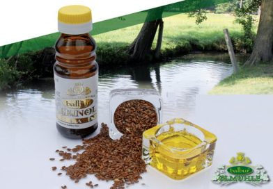 Leinöl der Superstoff – 6 Vorteile und wie man es verwendet